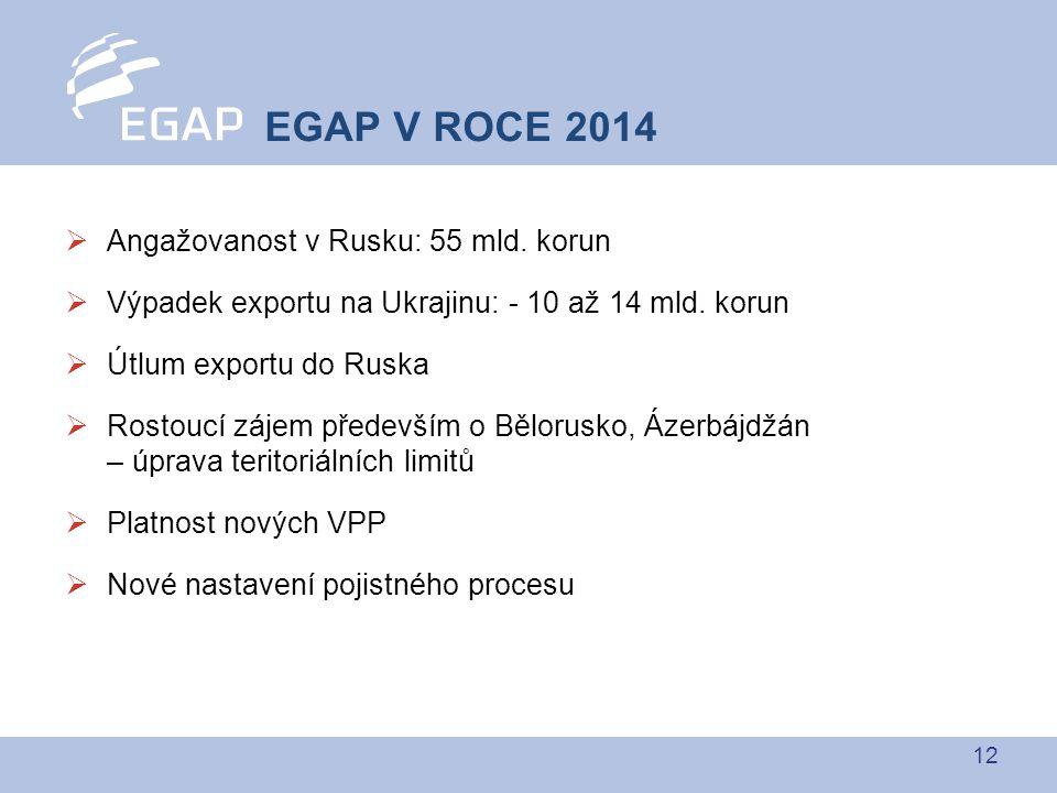 12  Angažovanost v Rusku: 55 mld.korun  Výpadek exportu na Ukrajinu: - 10 až 14 mld.