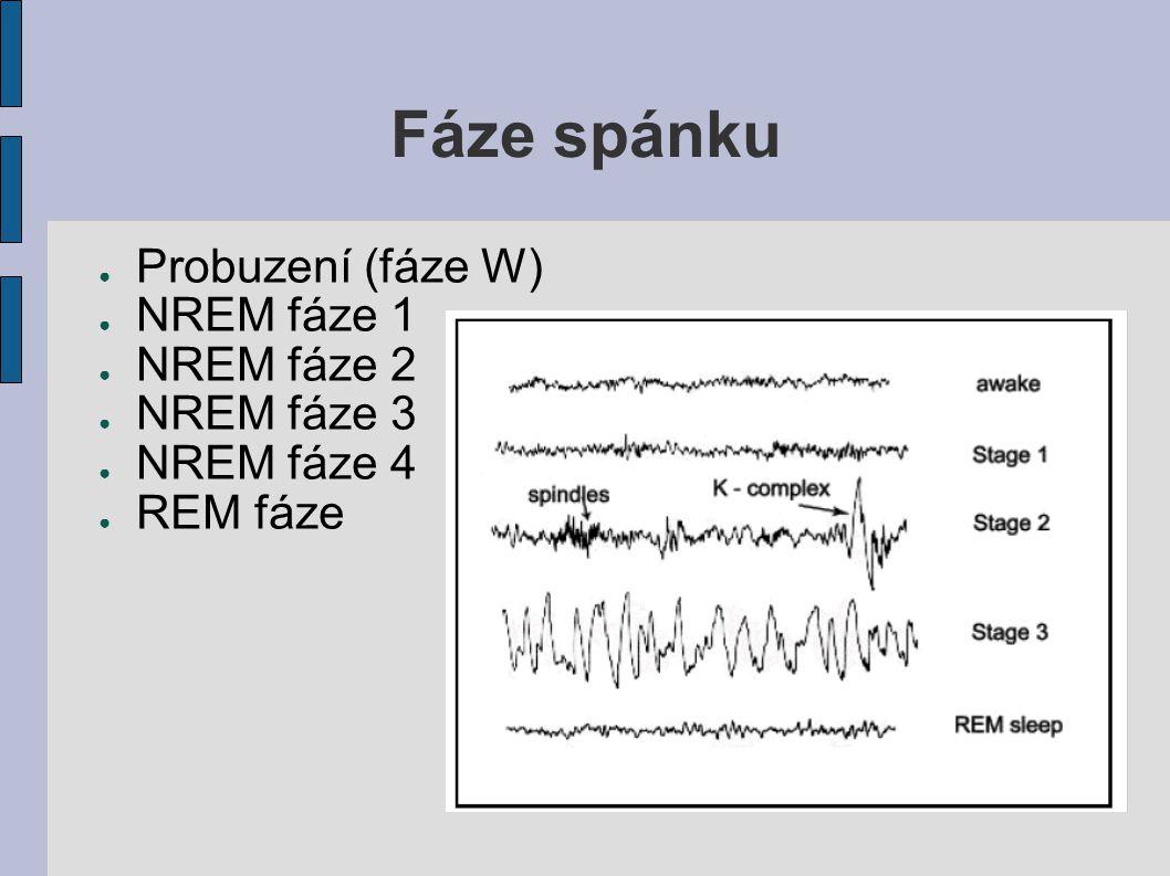 Fáze spánku ● Probuzení (fáze W) ● NREM fáze 1 ● NREM fáze 2 ● NREM fáze 3 ● NREM fáze 4 ● REM fáze