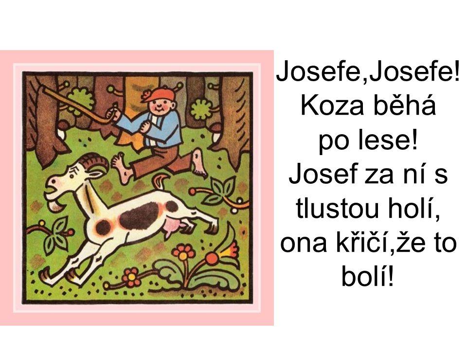 Josefe,Josefe! Koza běhá po lese! Josef za ní s tlustou holí, ona křičí,že to bolí!