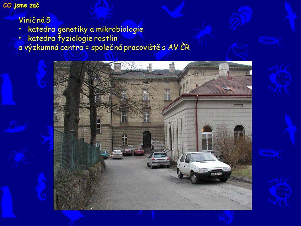 Viničná 5 katedra genetiky a mikrobiologie katedra fyziologie rostlin a výzkumná centra = společná pracoviště s AV ČR CO jsme zač
