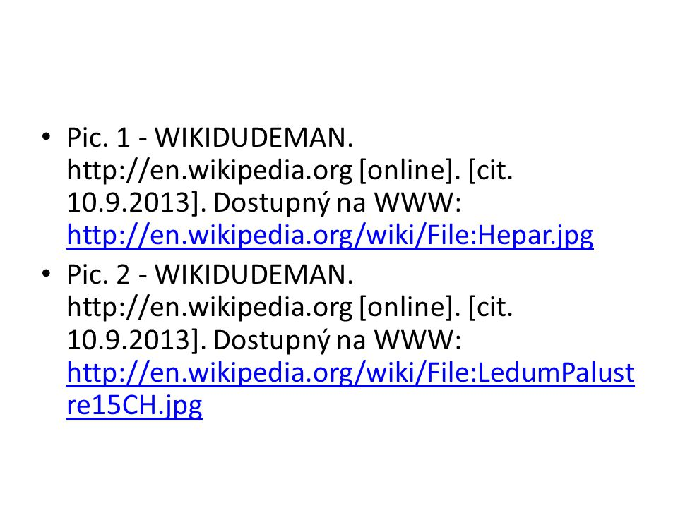 Pic. 1 - WIKIDUDEMAN. http://en.wikipedia.org [online]. [cit. 10.9.2013]. Dostupný na WWW: http://en.wikipedia.org/wiki/File:Hepar.jpg http://en.wikip