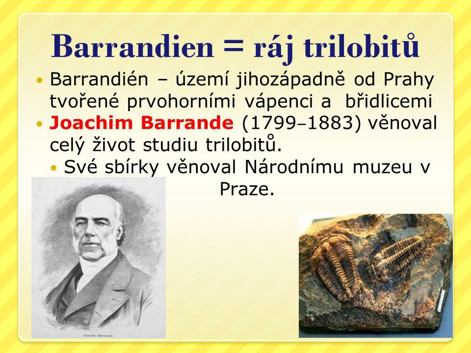 Barrandien = ráj trilobit ů Barrandién – území jihozápadně od Prahy tvořené prvohorními vápenci a břidlicemi Joachim Barrande (1799 ‒ 1883) věnoval celý život studiu trilobitů.