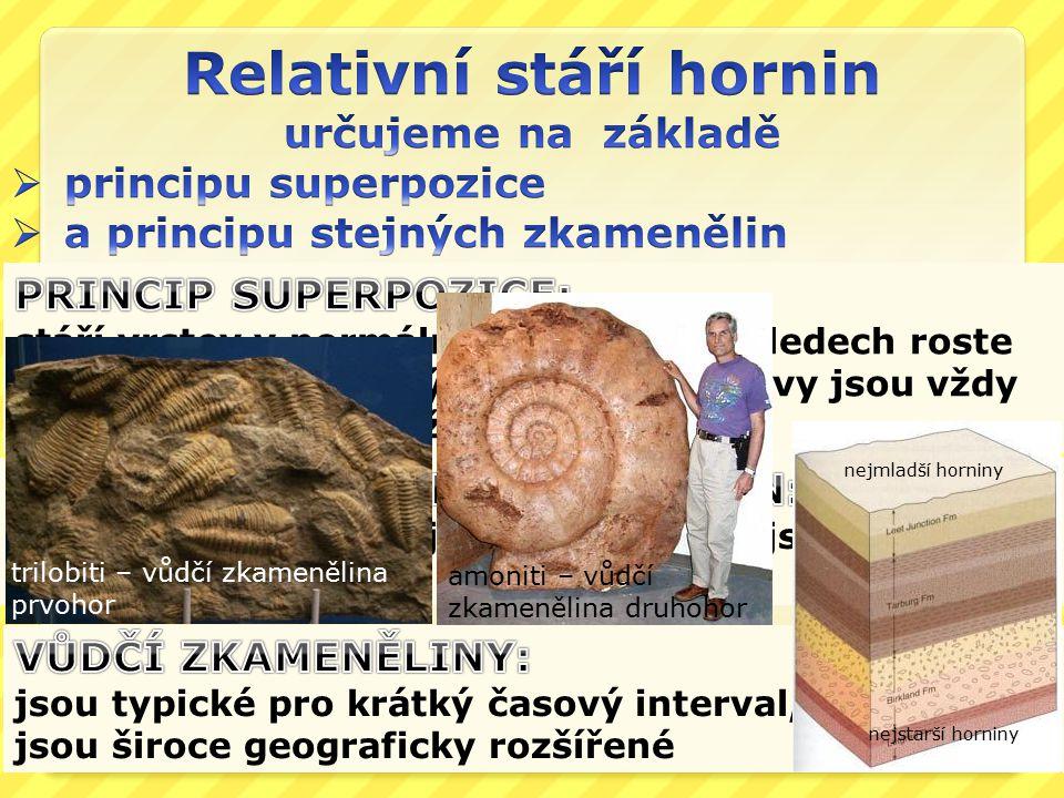 nejmladší horniny nejstarší horniny trilobiti – vůdčí zkamenělina prvohor amoniti – vůdčí zkamenělina druhohor