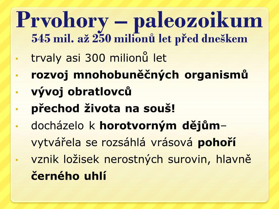 Prvohory – paleozoikum 545 mil.