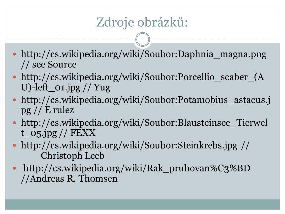 Zdroje obrázků: http://cs.wikipedia.org/wiki/Soubor:Daphnia_magna.png // see Source http://cs.wikipedia.org/wiki/Soubor:Porcellio_scaber_(A U)-left_01