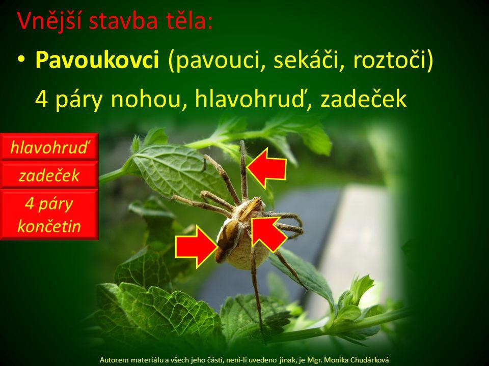 Vnější stavba těla: Pavoukovci (pavouci, sekáči, roztoči) 4 páry nohou, hlavohruď, zadeček Autorem materiálu a všech jeho částí, není-li uvedeno jinak, je Mgr.