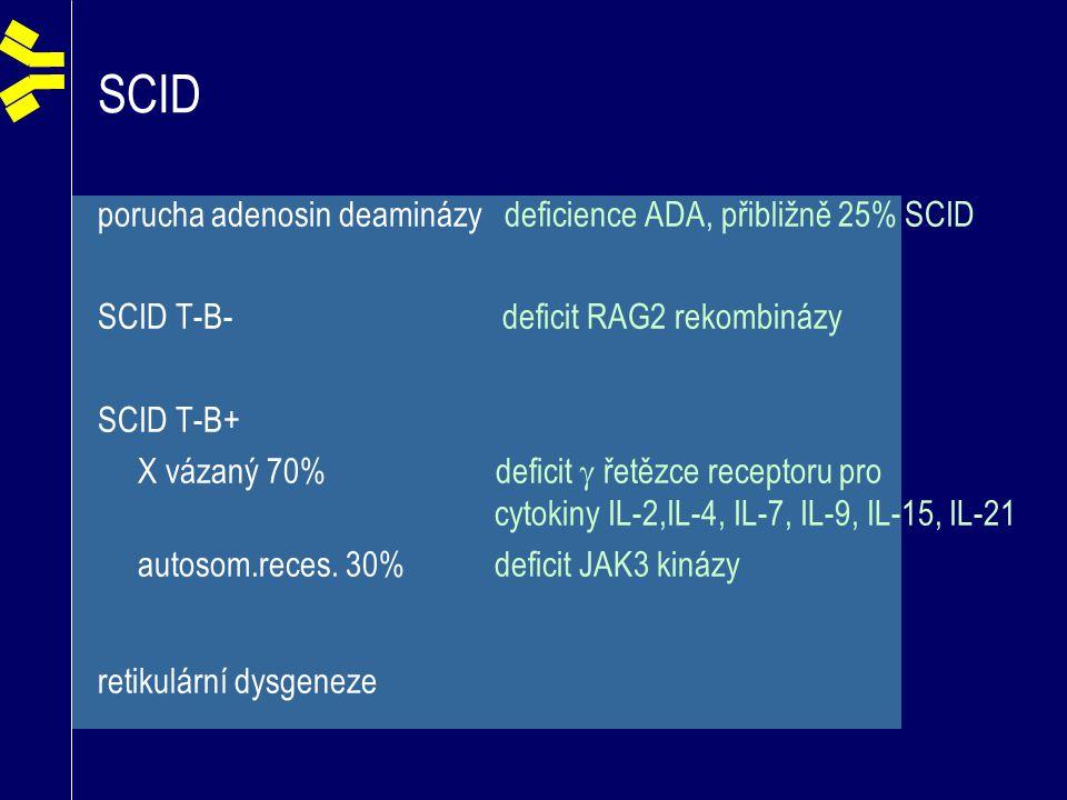 SCID porucha adenosin deaminázy deficience ADA, přibližně 25% SCID SCID T-B- deficit RAG2 rekombinázy SCID T-B+ X vázaný 70% deficit  řetězce recepto