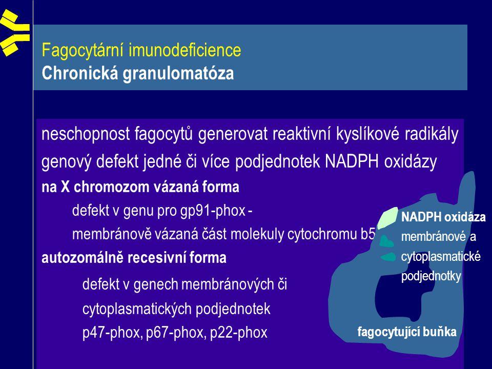 Fagocytární imunodeficience Chronická granulomatóza neschopnost fagocytů generovat reaktivní kyslíkové radikály genový defekt jedné či více podjednote