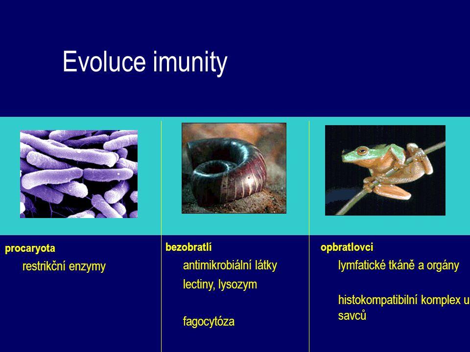 Evoluce imunity procaryota restrikční enzymy opbratlovci lymfatické tkáně a orgány histokompatibilní komplex u savců bezobratlí antimikrobiální látky
