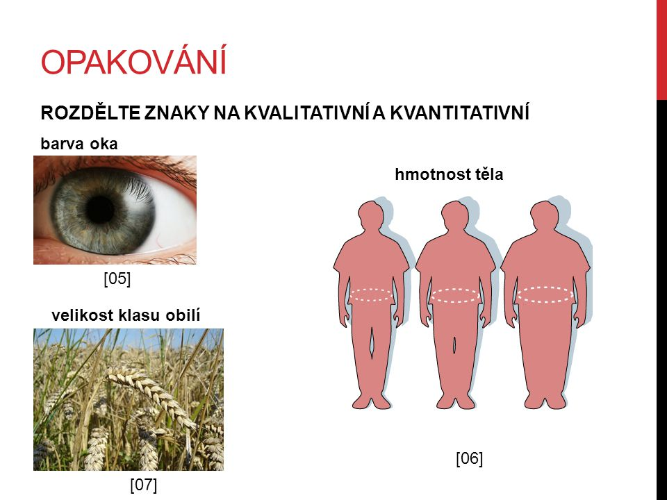 OPAKOVÁNÍ ROZDĚLTE ZNAKY NA KVALITATIVNÍ A KVANTITATIVNÍ barva oka [05] [06] hmotnost těla velikost klasu obilí [07]