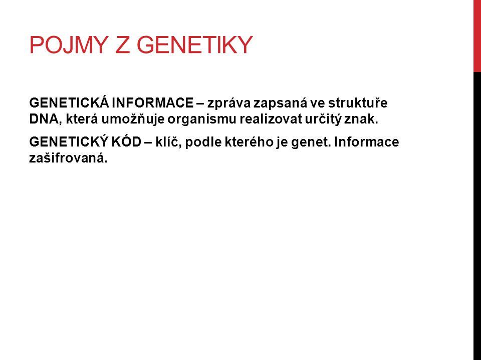 POJMY Z GENETIKY GENETICKÁ INFORMACE – zpráva zapsaná ve struktuře DNA, která umožňuje organismu realizovat určitý znak.