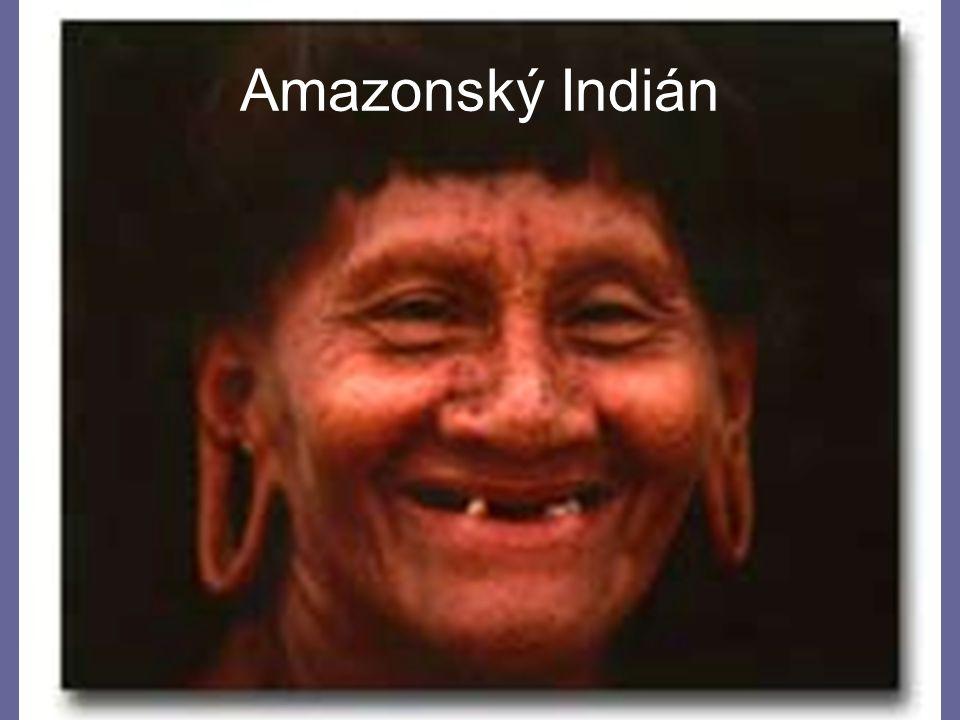 24.4.2015Zdeněk Bergman, G Teplice Amazonský Indián