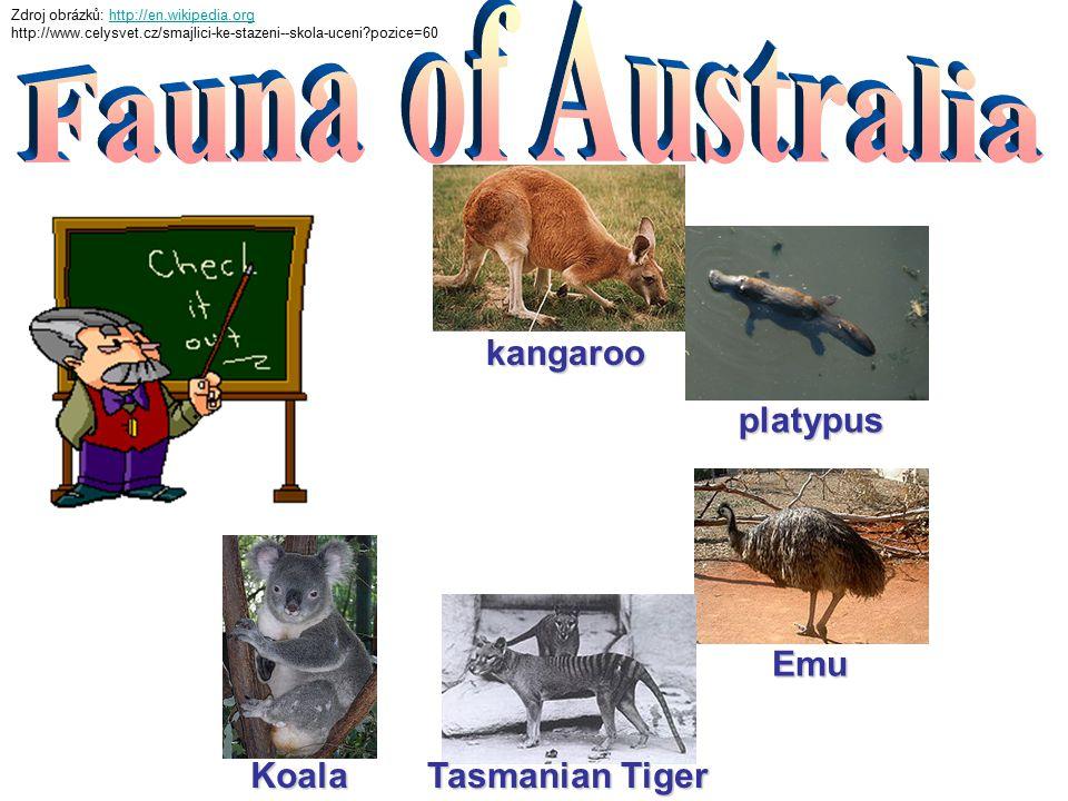 kangaroo Koala platypus Emu Tasmanian Tiger Zdroj obrázků: http://en.wikipedia.orghttp://en.wikipedia.org http://www.celysvet.cz/smajlici-ke-stazeni--skola-uceni pozice=60