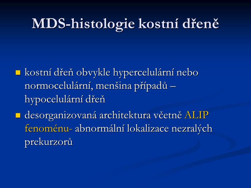 MDS-histologie kostní dřeně kostní dřeň obvykle hypercelulární nebo normocelulární, menšina případů – hypocelulární dřeň kostní dřeň obvykle hypercelulární nebo normocelulární, menšina případů – hypocelulární dřeň desorganizovaná architektura včetně ALIP fenoménu- abnormální lokalizace nezralých prekurzorů desorganizovaná architektura včetně ALIP fenoménu- abnormální lokalizace nezralých prekurzorů
