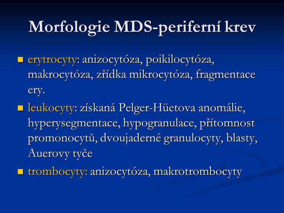 Morfologie MDS-periferní krev erytrocyty: anizocytóza, poikilocytóza, makrocytóza, zřídka mikrocytóza, fragmentace ery.
