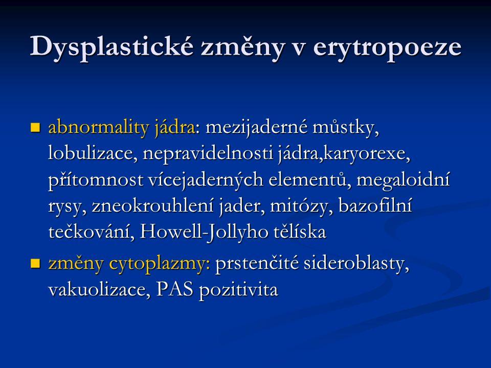 Dysplastické změny v erytropoeze abnormality jádra: mezijaderné můstky, lobulizace, nepravidelnosti jádra,karyorexe, přítomnost vícejaderných elementů, megaloidní rysy, zneokrouhlení jader, mitózy, bazofilní tečkování, Howell-Jollyho tělíska abnormality jádra: mezijaderné můstky, lobulizace, nepravidelnosti jádra,karyorexe, přítomnost vícejaderných elementů, megaloidní rysy, zneokrouhlení jader, mitózy, bazofilní tečkování, Howell-Jollyho tělíska změny cytoplazmy: prstenčité sideroblasty, vakuolizace, PAS pozitivita změny cytoplazmy: prstenčité sideroblasty, vakuolizace, PAS pozitivita