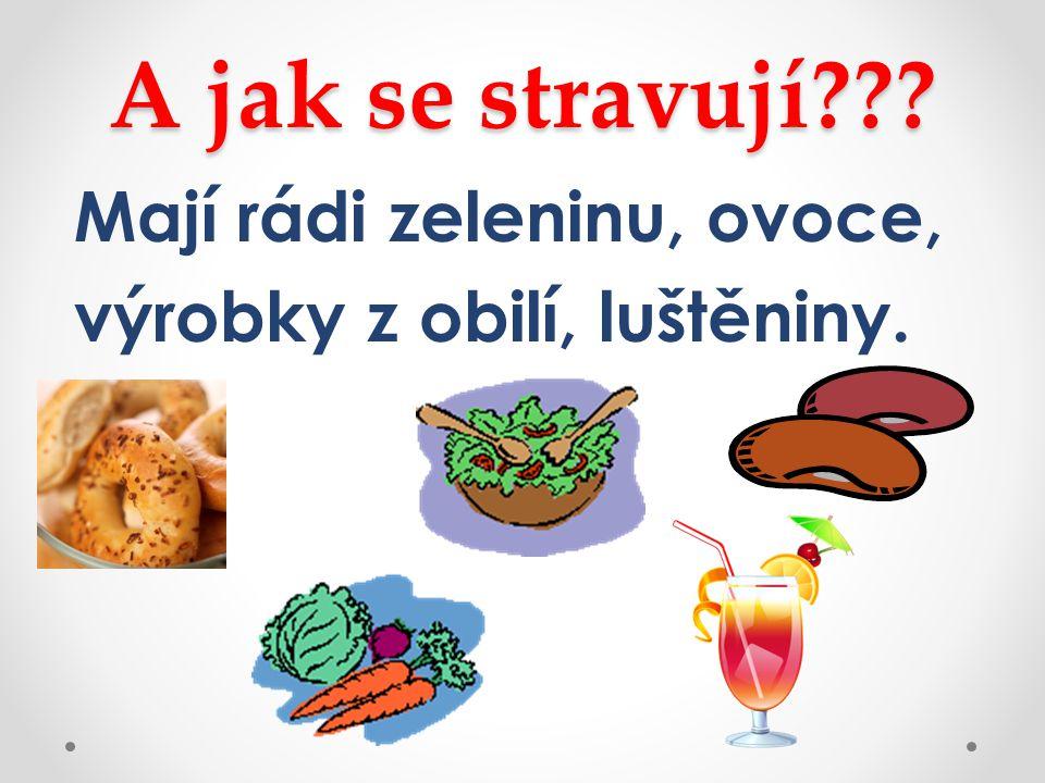 A jak se stravují Mají rádi zeleninu, ovoce, výrobky z obilí, luštěniny.