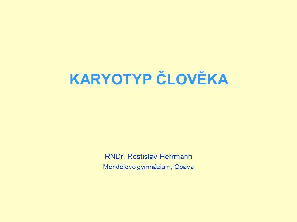 KARYOTYP ČLOVĚKA RNDr. Rostislav Herrmann Mendelovo gymnázium, Opava
