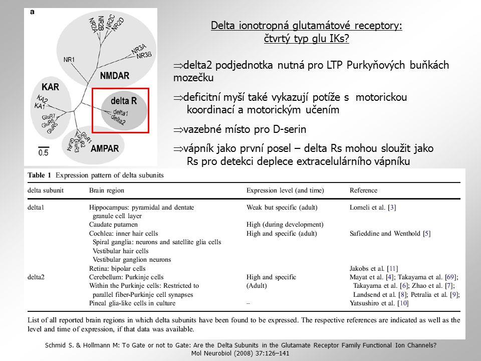 Delta ionotropná glutamátové receptory: čtvrtý typ glu IKs?  delta2 podjednotka nutná pro LTP Purkyňových buňkách mozečku  deficitní myší také vykaz