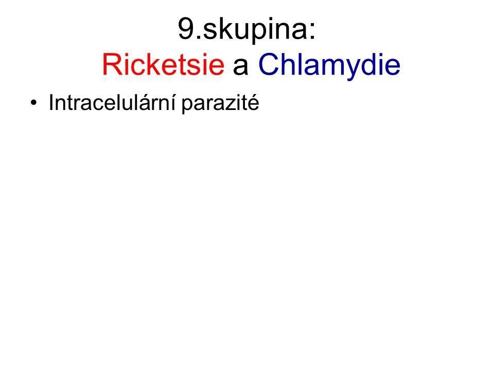9.skupina: Ricketsie a Chlamydie Intracelulární parazité