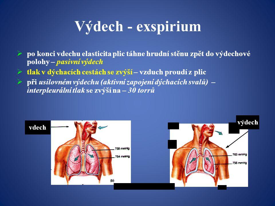 Výdech - exspirium  po konci vdechu elasticita plic táhne hrudní stěnu zpět do výdechové polohy – pasivní výdech  tlak v dýchacích cestách se zvýší – vzduch proudí z plic  při usilovném výdechu (aktivní zapojení dýchacích svalů) – interpleurální tlak se zvýší na – 30 torrů vdech výdech