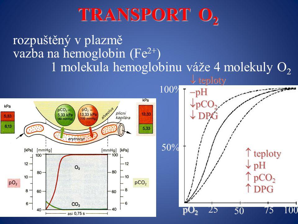 rozpuštěný v plazmě vazba na hemoglobin (Fe 2+ ) 1 molekula hemoglobinu váže 4 molekuly O 2 TRANSPORT O 2 100% 50%  teploty  pH  pCO 2  DPG  teploty  pH  pCO 2  DPG pO 2 pO 2 25 50 75100