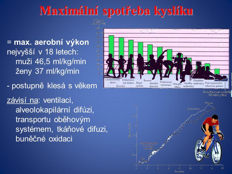 Maximální spotřeba kyslíku = max.