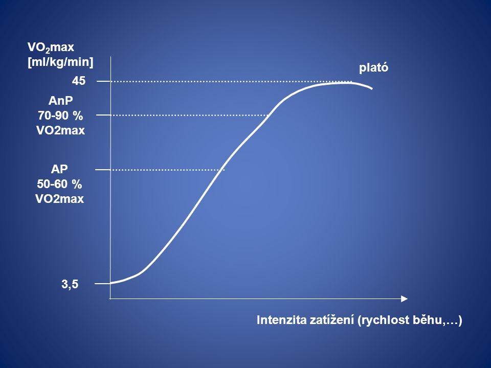 3,5 VO 2 max [ml/kg/min] 45 Intenzita zatížení (rychlost běhu,…) AP 50-60 % VO2max AnP 70-90 % VO2max plató