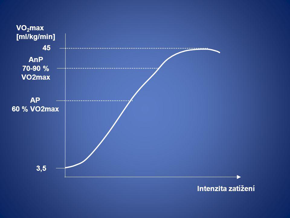 3,5 VO 2 max [ml/kg/min] 45 Intenzita zatížení AP 60 % VO2max AnP 70-90 % VO2max