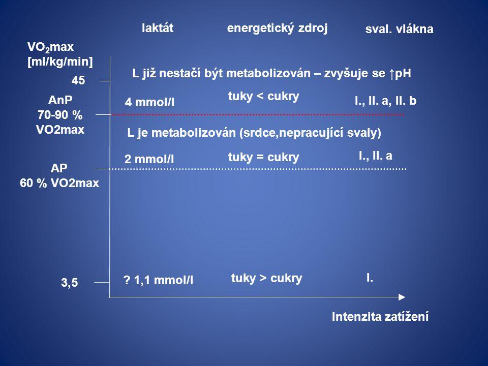 3,5 VO 2 max [ml/kg/min] 45 Intenzita zatížení AP 60 % VO2max AnP 70-90 % VO2max laktát energetický zdroj .