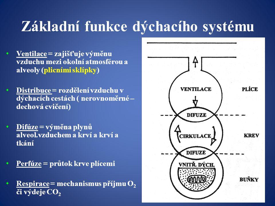 -fáze průvodní= při vlastním výkonu roste DF a ventilace nejdřív rychle (fáze iniciální), →zpomalení, →při déletrvající zátěži (více než 40-60s) se může projevit mrtvý bod Změny reaktivní