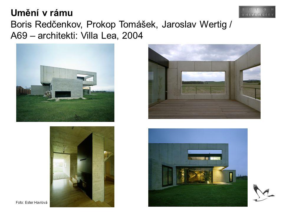 Umění v rámu Boris Redčenkov, Prokop Tomášek, Jaroslav Wertig / A69 – architekti: Villa Lea, 2004 Foto: Ester Havlová