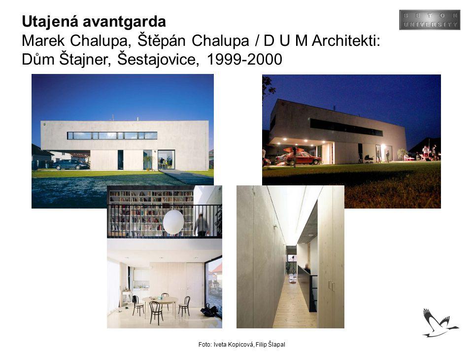 Utajená avantgarda Marek Chalupa, Štěpán Chalupa / D U M Architekti: Dům Štajner, Šestajovice, 1999-2000 Foto: Iveta Kopicová, Filip Šlapal