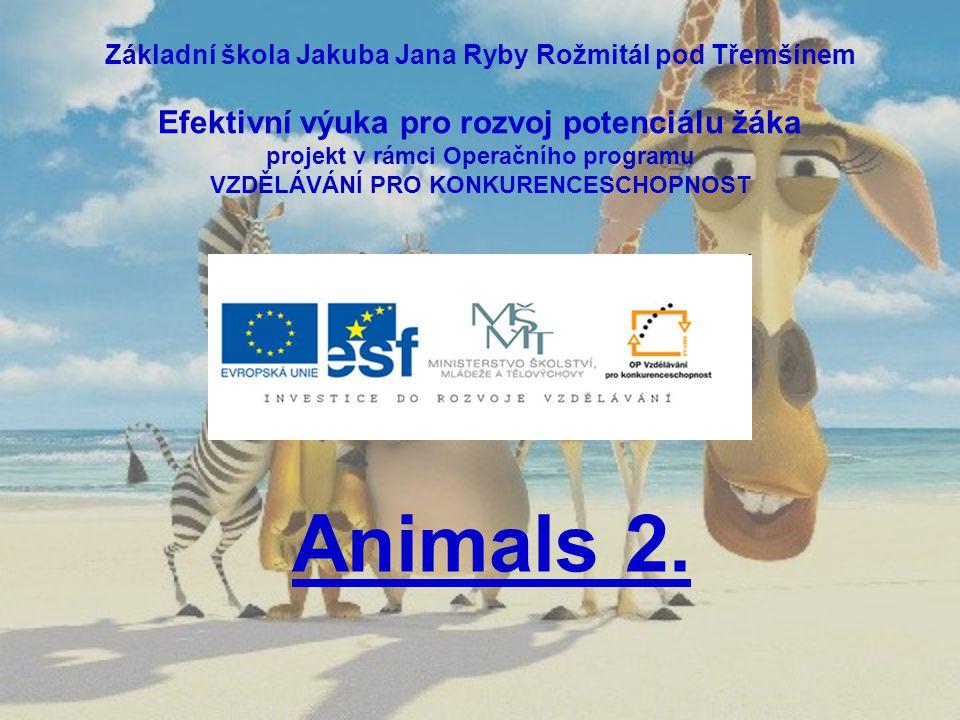Základní škola Jakuba Jana Ryby Rožmitál pod Třemšínem Efektivní výuka pro rozvoj potenciálu žáka projekt v rámci Operačního programu VZDĚLÁVÁNÍ PRO KONKURENCESCHOPNOST Animals 2.
