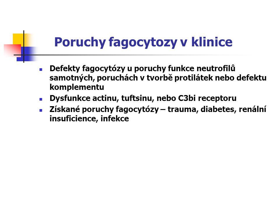 Poruchy fagocytozy v klinice Defekty fagocytózy u poruchy funkce neutrofilů samotných, poruchách v tvorbě protilátek nebo defektu komplementu Dysfunkce actinu, tuftsinu, nebo C3bi receptoru Získané poruchy fagocytózy – trauma, diabetes, renální insuficience, infekce