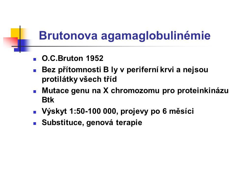 Brutonova agamaglobulinémie O.C.Bruton 1952 Bez přítomnosti B ly v periferní krvi a nejsou protilátky všech tříd Mutace genu na X chromozomu pro proteinkinázu Btk Výskyt 1:50-100 000, projevy po 6 měsíci Substituce, genová terapie