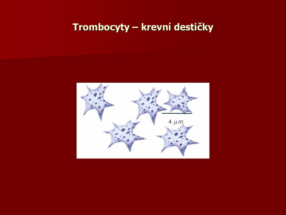 Trombocyty – krevní destičky