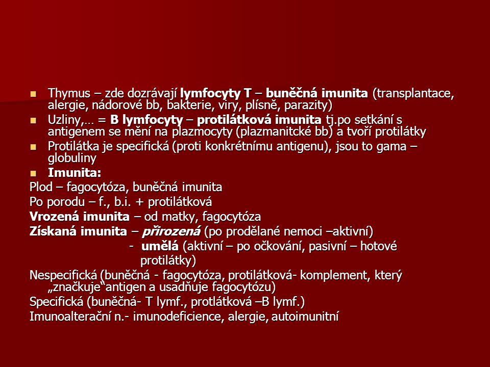 Thymus – zde dozrávají lymfocyty T – buněčná imunita (transplantace, alergie, nádorové bb, bakterie, viry, plísně, parazity) Thymus – zde dozrávají lymfocyty T – buněčná imunita (transplantace, alergie, nádorové bb, bakterie, viry, plísně, parazity) Uzliny,… = B lymfocyty – protilátková imunita tj.po setkání s antigenem se mění na plazmocyty (plazmanitcké bb) a tvoří protilátky Uzliny,… = B lymfocyty – protilátková imunita tj.po setkání s antigenem se mění na plazmocyty (plazmanitcké bb) a tvoří protilátky Protilátka je specifická (proti konkrétnímu antigenu), jsou to gama – globuliny Protilátka je specifická (proti konkrétnímu antigenu), jsou to gama – globuliny Imunita: Imunita: Plod – fagocytóza, buněčná imunita Po porodu – f., b.i.