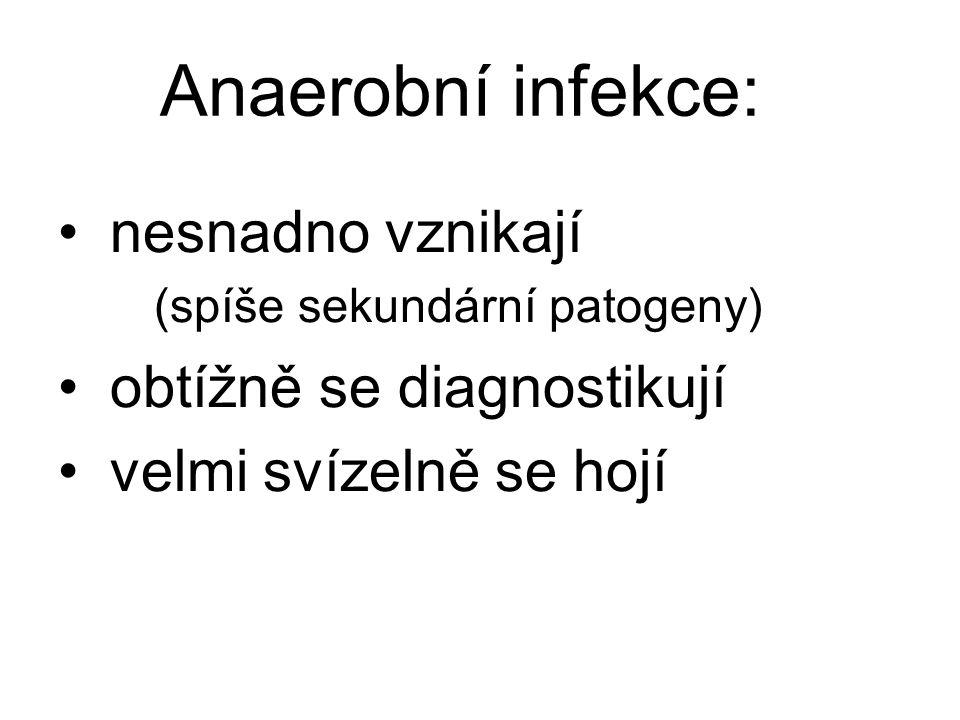 Anaerobní infekce: nesnadno vznikají (spíše sekundární patogeny) obtížně se diagnostikují velmi svízelně se hojí