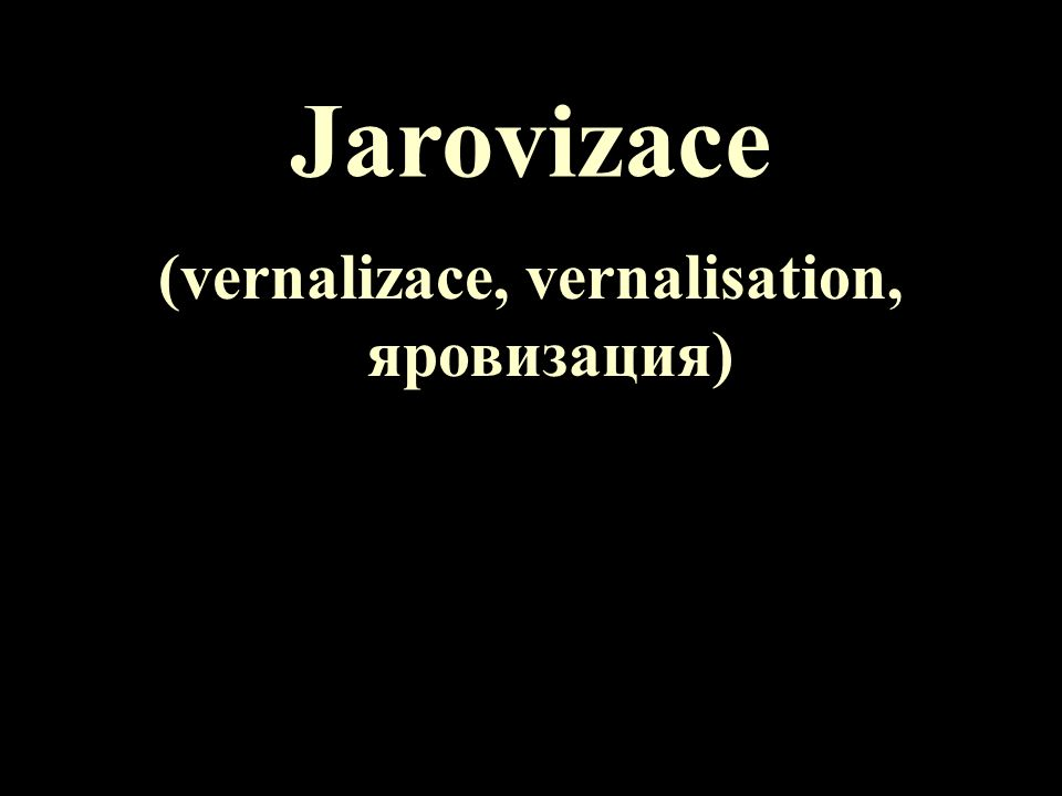 Jarovizace (vernalizace, vernalisation, яровизация)