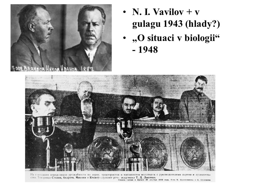 """N. I. Vavilov + v gulagu 1943 (hlady?) """"O situaci v biologii - 1948"""