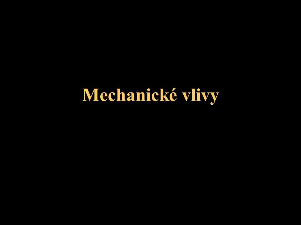 Mechanické vlivy