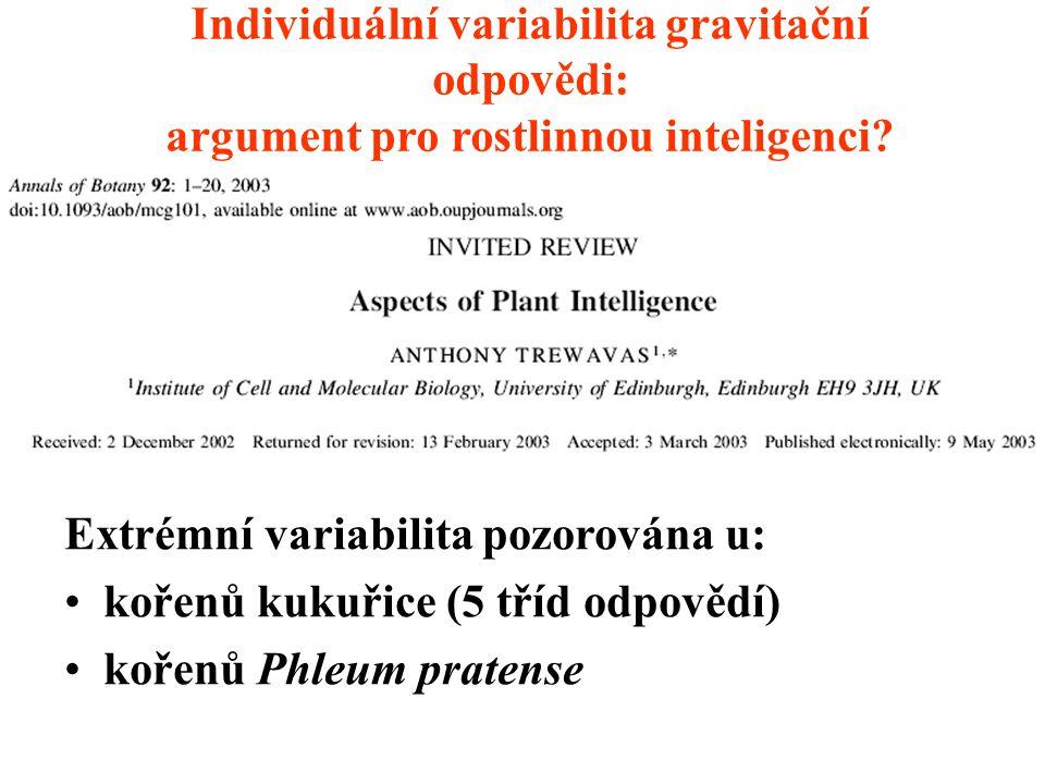 Individuální variabilita gravitační odpovědi: argument pro rostlinnou inteligenci? (A. Trewavas) Extrémní variabilita pozorována u: kořenů kukuřice (5