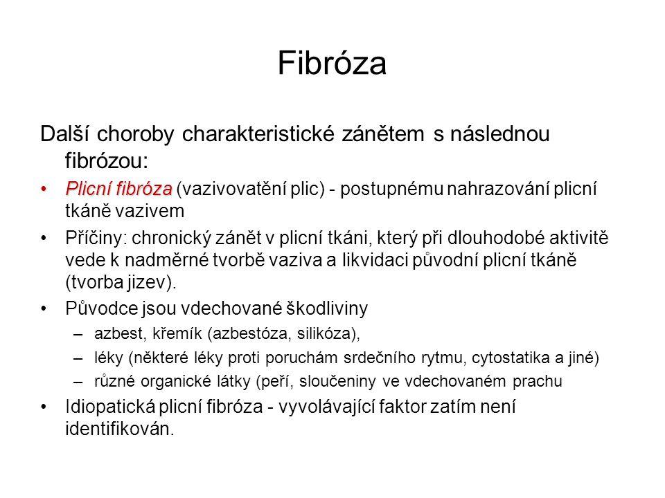 Fibróza Další choroby charakteristické zánětem s následnou fibrózou: Plicní fibrózaPlicní fibróza (vazivovatění plic) - postupnému nahrazování plicní