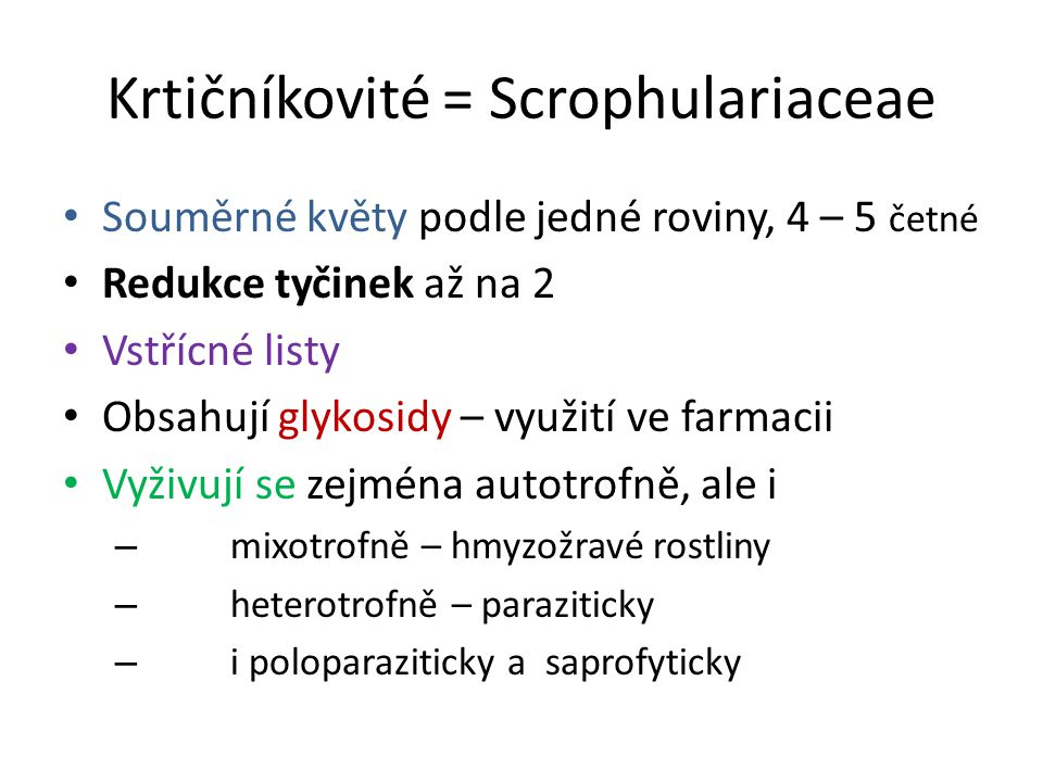 Krtičníkovité = Scrophulariaceae Souměrné květy podle jedné roviny, 4 – 5 četné Redukce tyčinek až na 2 Vstřícné listy Obsahují glykosidy – využití ve