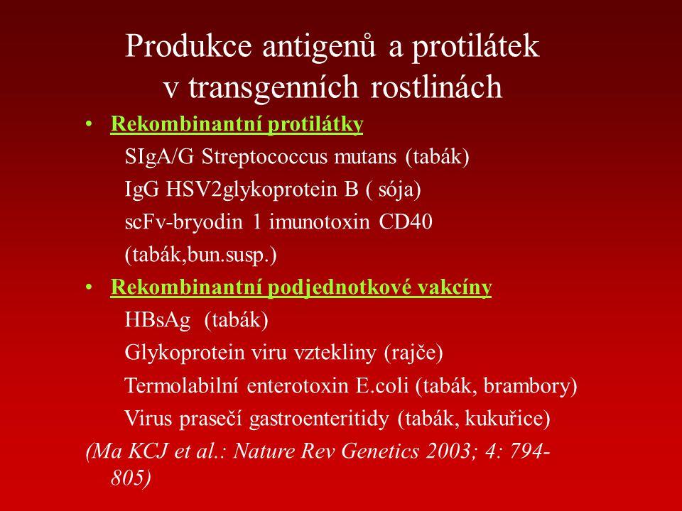 Produkce antigenů a protilátek v transgenních rostlinách Rekombinantní protilátky SIgA/G Streptococcus mutans (tabák) IgG HSV2glykoprotein B ( sója) s