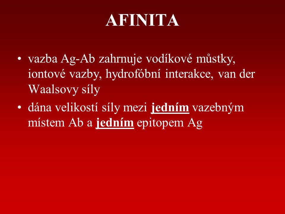 AVIDITA dána vícenásobnou interakcí mezi multivalentní Ab a Ag (opakovaný epitop na povrchu)