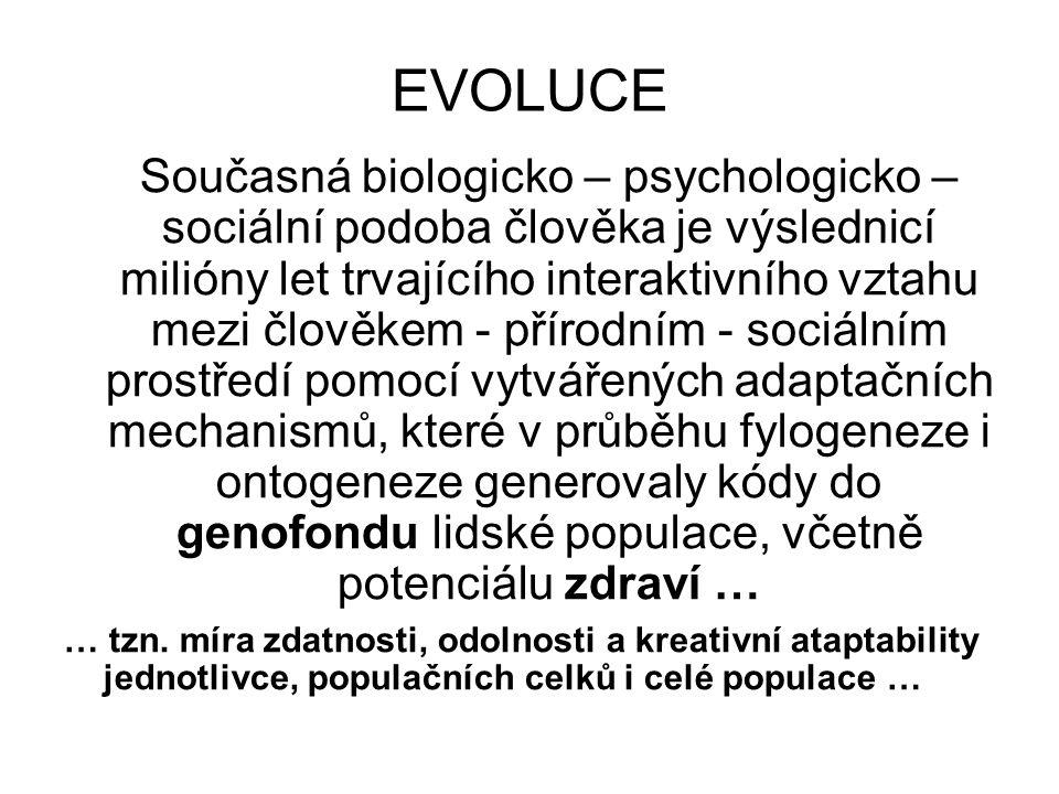EVOLUCE Současná biologicko – psychologicko – sociální podoba člověka je výslednicí milióny let trvajícího interaktivního vztahu mezi člověkem - příro
