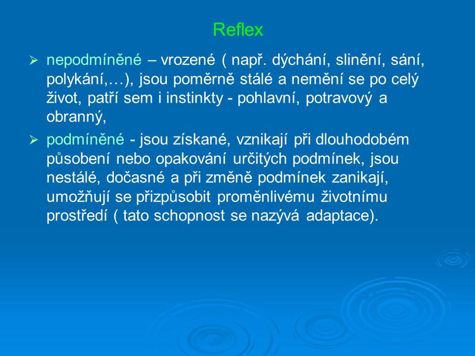 Reflex   nepodmíněné – vrozené ( např.