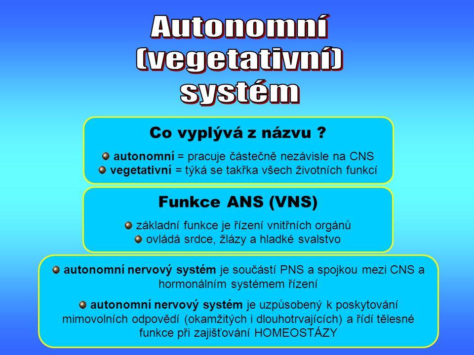 Co vyplývá z názvu ? autonomní = pracuje částečně nezávisle na CNS vegetativní = týká se takřka všech životních funkcí Funkce ANS (VNS) základní funkc